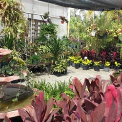 Photo Of Southern Gardens Nursery West Palm Beach Fl United States