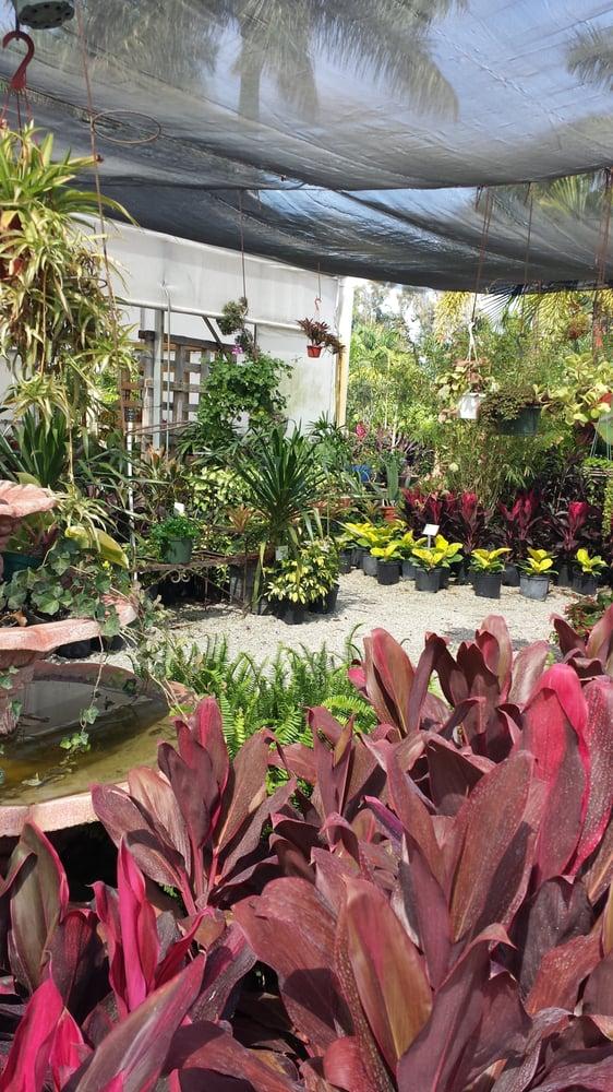 Southern Gardens Nursery: 7777 Southern Blvd, West Palm Beach, FL