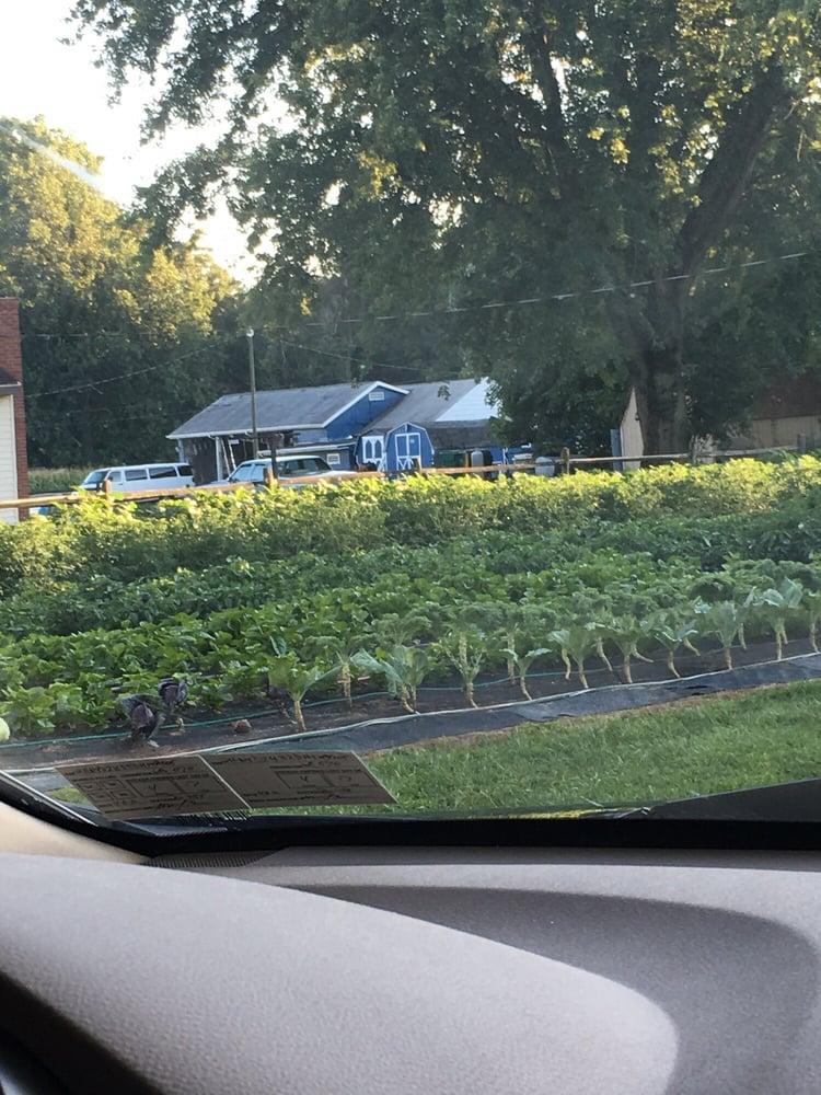 Vinh Vegetable: 14636 Sussex Hwy, Bridgeville, DE