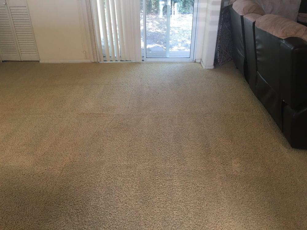 Black Spots On Carpet Carpet Vidalondon