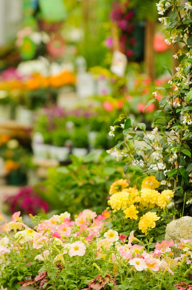 Sargent's Landscape & Nursery: 7955 18th Ave NW, Rochester, MN