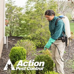 Action Pest Control: 2301 S Green River Rd, Evansville, IN