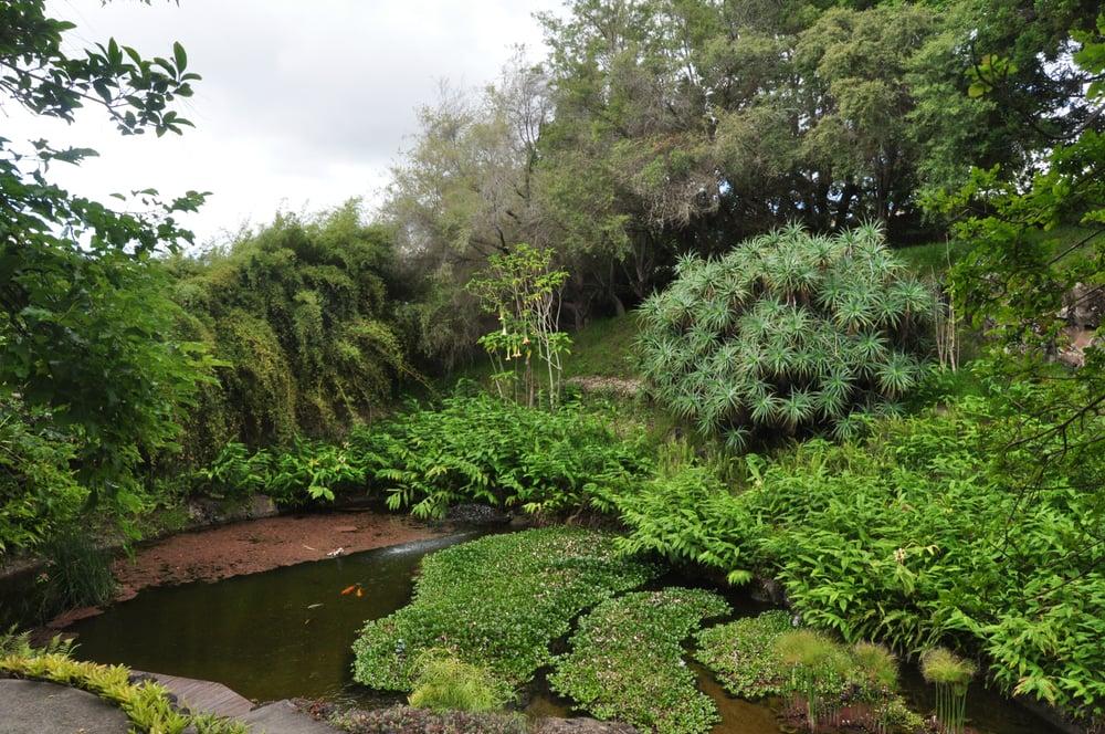 The Pond At Kula Botanic Gardens In Kula Maui Hi Yelp