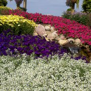 Captivating Creating Beauty Seen From Photo Of Garden Crossings   Zeeland, MI, United  States.