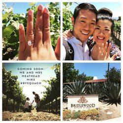 Photo Of Bridlewood Estate Winery Santa Ynez Ca United States I Got