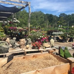 Photo Of Hampton Nursery Landscapes Bays Ny United States