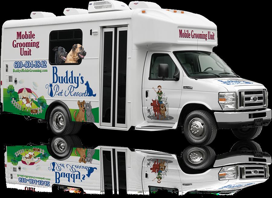 Buddy's Pet Resort: 186 Rock Hollow Rd, Birdsboro, PA