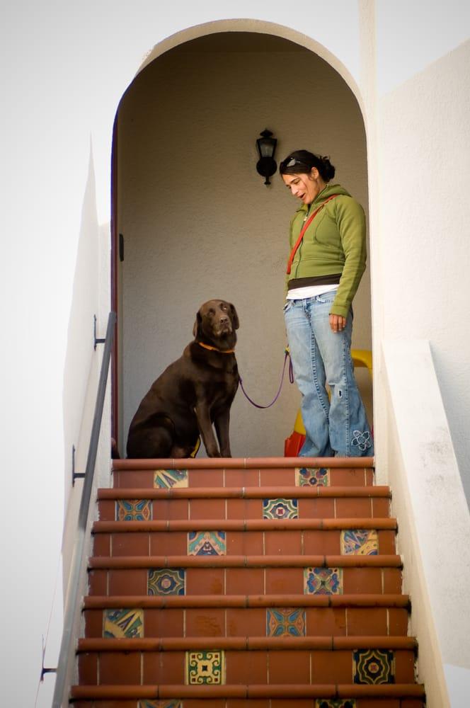 Dog Starr: San Francisco, CA