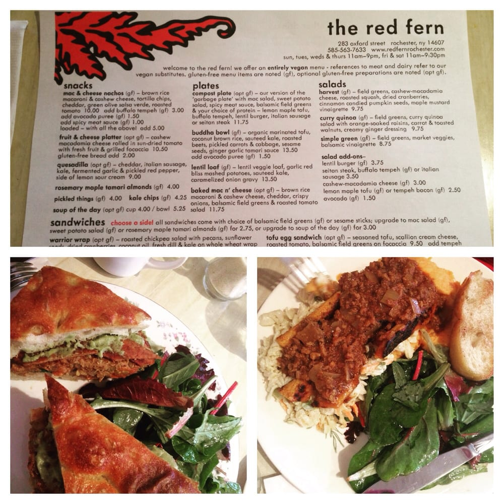 Red Fern Restaurant Rochester Ny