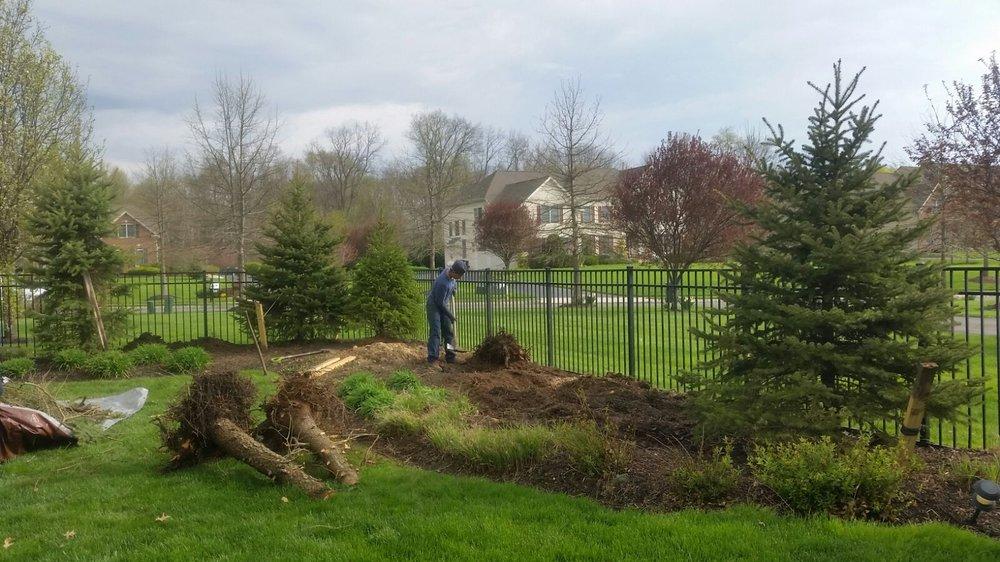 Green Point  Landscaping & Tree Service: 1101 Bradley Ct, Princeton, NJ