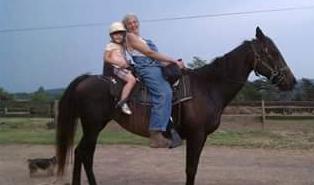Greenridge Horse Ranch: 130 Horse Ranch Rd, Artemas, PA