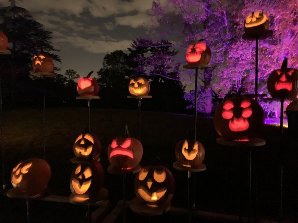 Social Spots from The Rise Of The Jack O' Lanterns