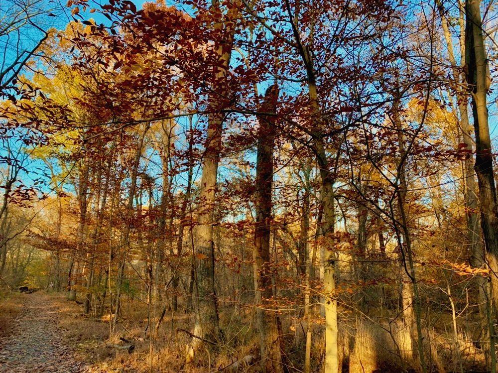 Seneca Regional Park: 101 Seneca Rd, Great Falls, VA