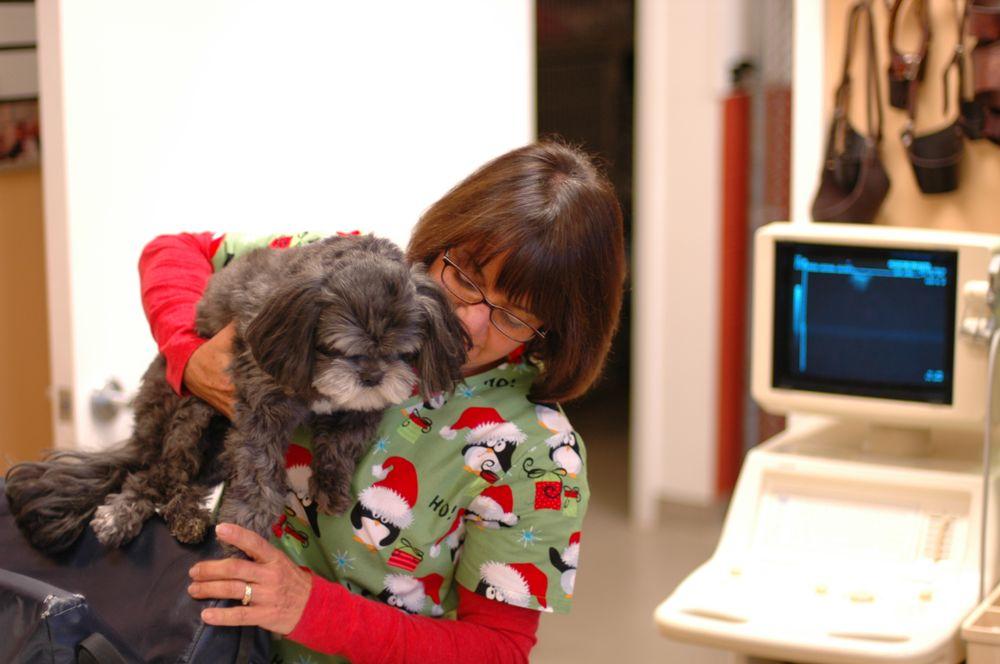 Evergreen Animal Clinic: 3389 Orcutt Rd, Santa Maria, CA