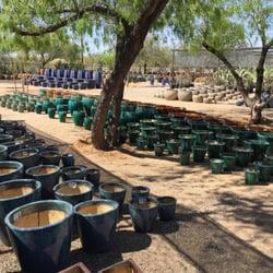 Photo Of North Scottsdale Nursery And Cactus Az United States