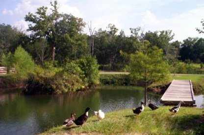 Photo For Home Place RV Park