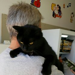Wags To Wiskers Pet Supplies - 29 Photos - Pet Stores - 1363 E
