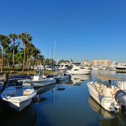brand new 633c1 9c7e8 Photo of Bayfront Excursions - Downtown - Sarasota, FL, United States.  Boats available