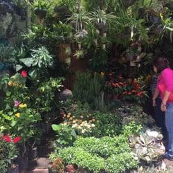 Incroyable Farmeru0027s Garden   Florists   Mc Arthur Drive, Araneta Center ...
