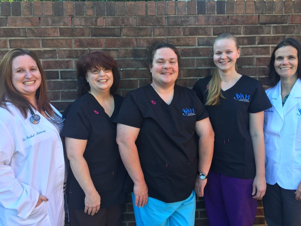 Youngsville Animal Hospital: 141 E Main St, Youngsville, NC