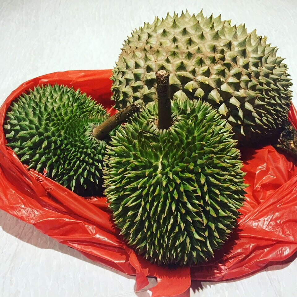 Ah seng durian 16 photos greengrocers 20 ghim moh market ghim ah seng durian 16 photos greengrocers 20 ghim moh market ghim moh singapore phone number yelp ccuart Image collections