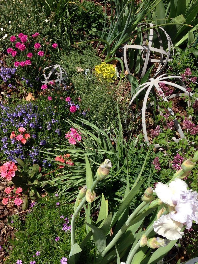 Green Mountain Garden