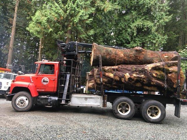 Photo of Whieldon & Son Logging - Maple Ridge, BC, Canada