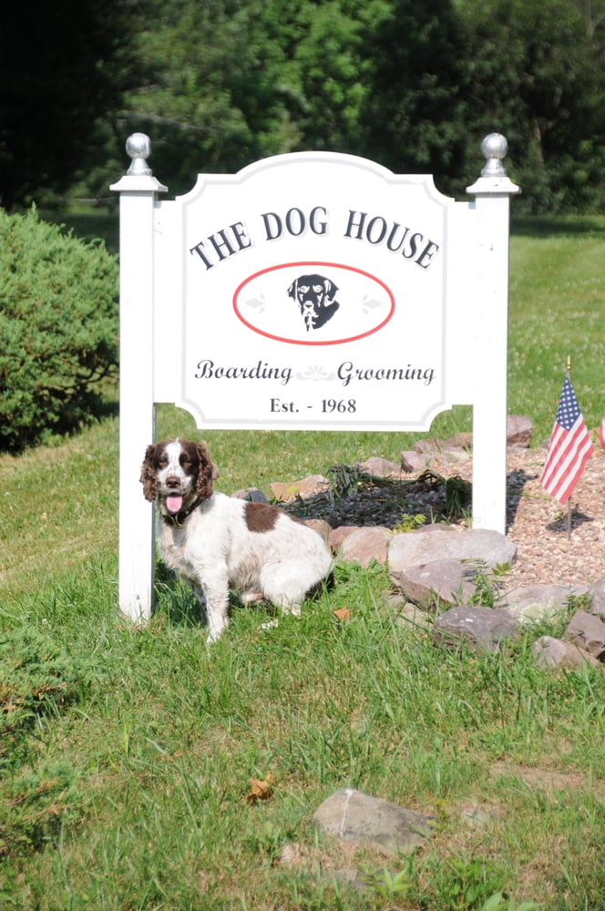 Dog House Kennel Pottersville Nj