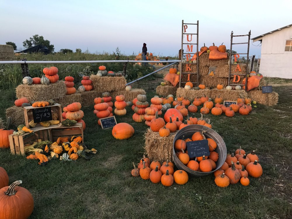 The Pumpkin Pad: 35100 East Outer Belt Rd, Lone Jack, MO