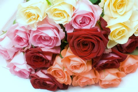 C E Florals: Braselton, GA