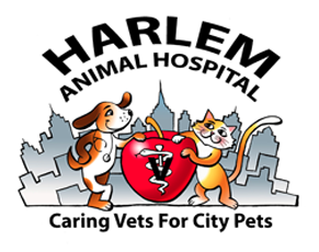 Harlem Animal Hospital