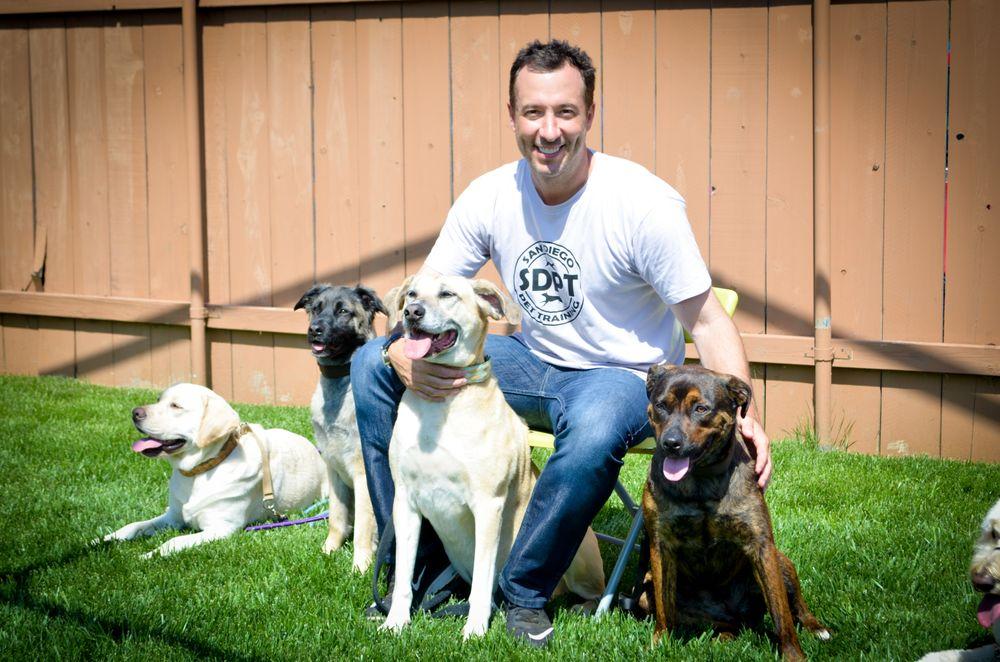 Dressage d'animaux de compagnie à San Diego