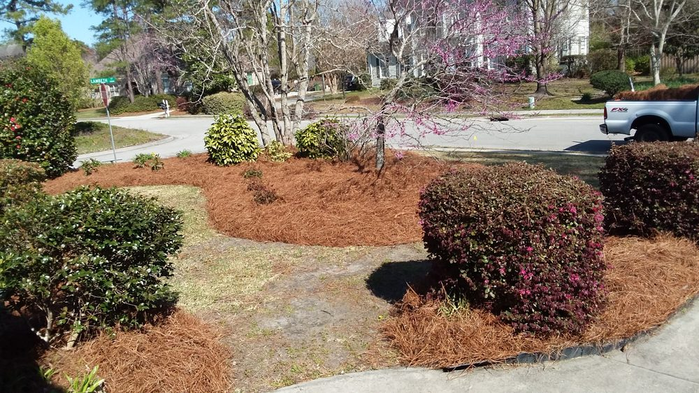 Rico Landscaping