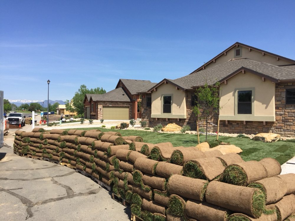 Vista Landscape Development: Denver, CO