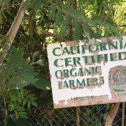 Photo Of Exotica Rare Fruit Nursery Vista Ca United States