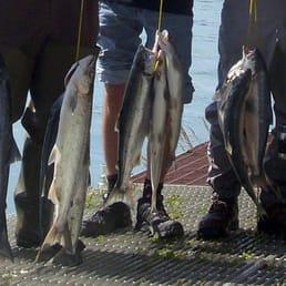 Kenai Keys Fish On Inn  11 Photos  Vacation Rentals  35909