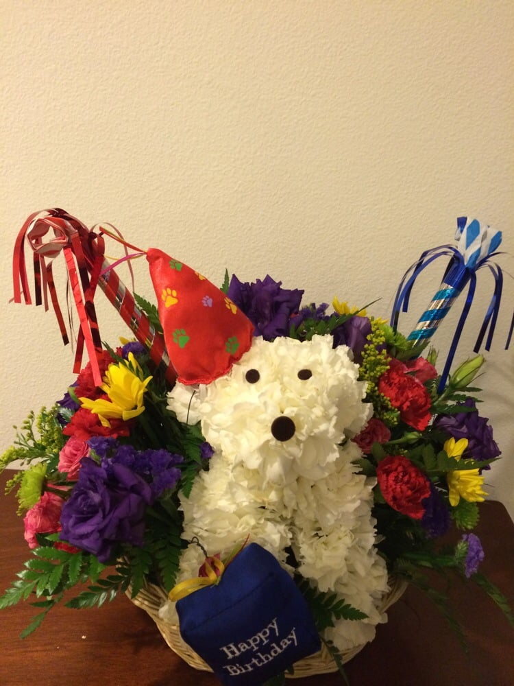 Medium size birthday dog bouquet - Yelp