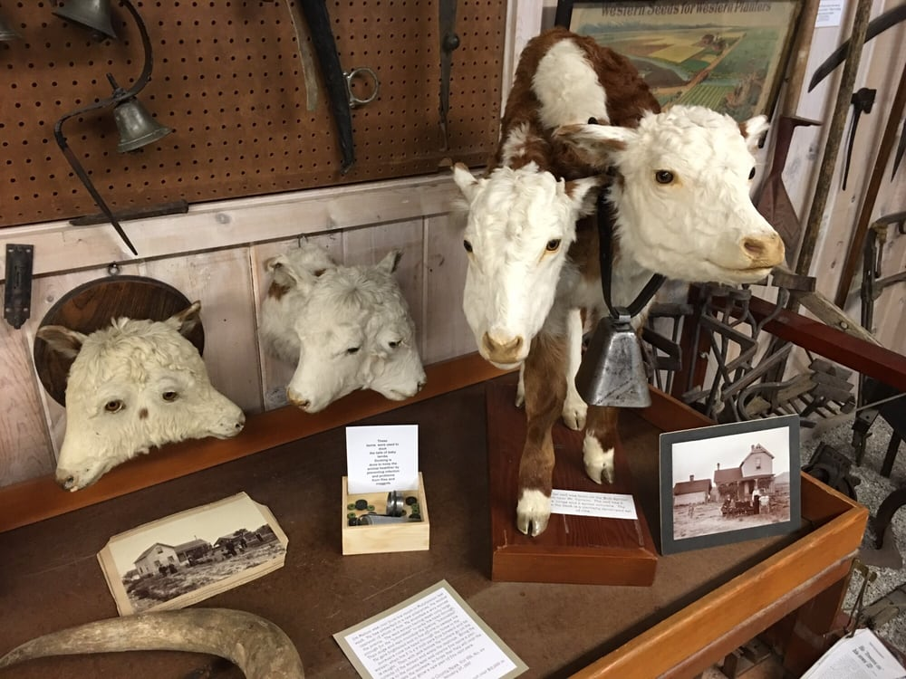 Grant County Historical Museum: 101 S Canyon City Blvd, Canyon City, OR