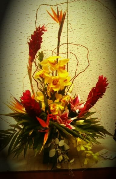 Mayfield Flowers Tucson