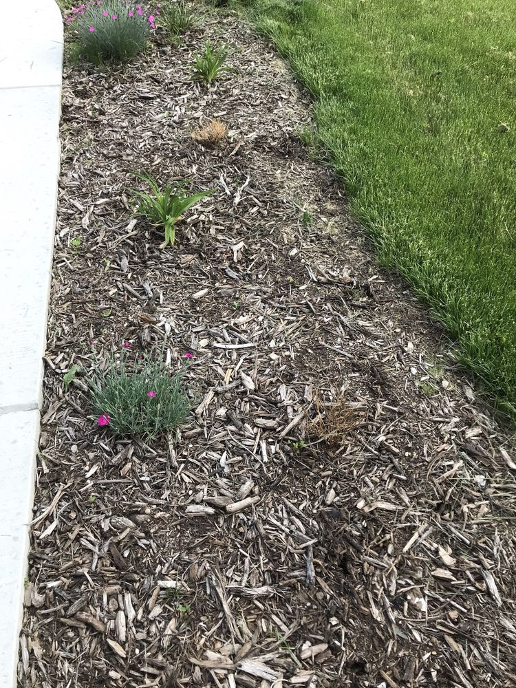 Grow Rite: 5535 Springbrook Rd, Pleasant Prairie, WI