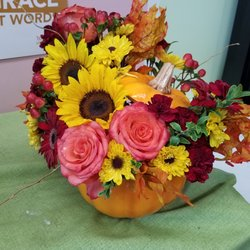 Wonderbaarlijk Daughters Flowers - Florists - 4358 Holland Plaza Shopping Ctr AF-23