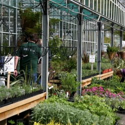 Photo Of Bodmin Plant And Herb Nursery Cornwall United Kingdom