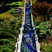 ... Photo Of The 16th Avenue Tiled Steps   San Francisco, CA, United States  ...