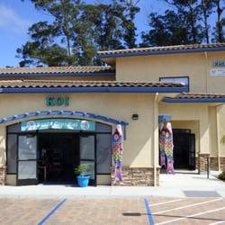 The Fish Vet Store - CLOSED - Veterinarians - 440 Airport