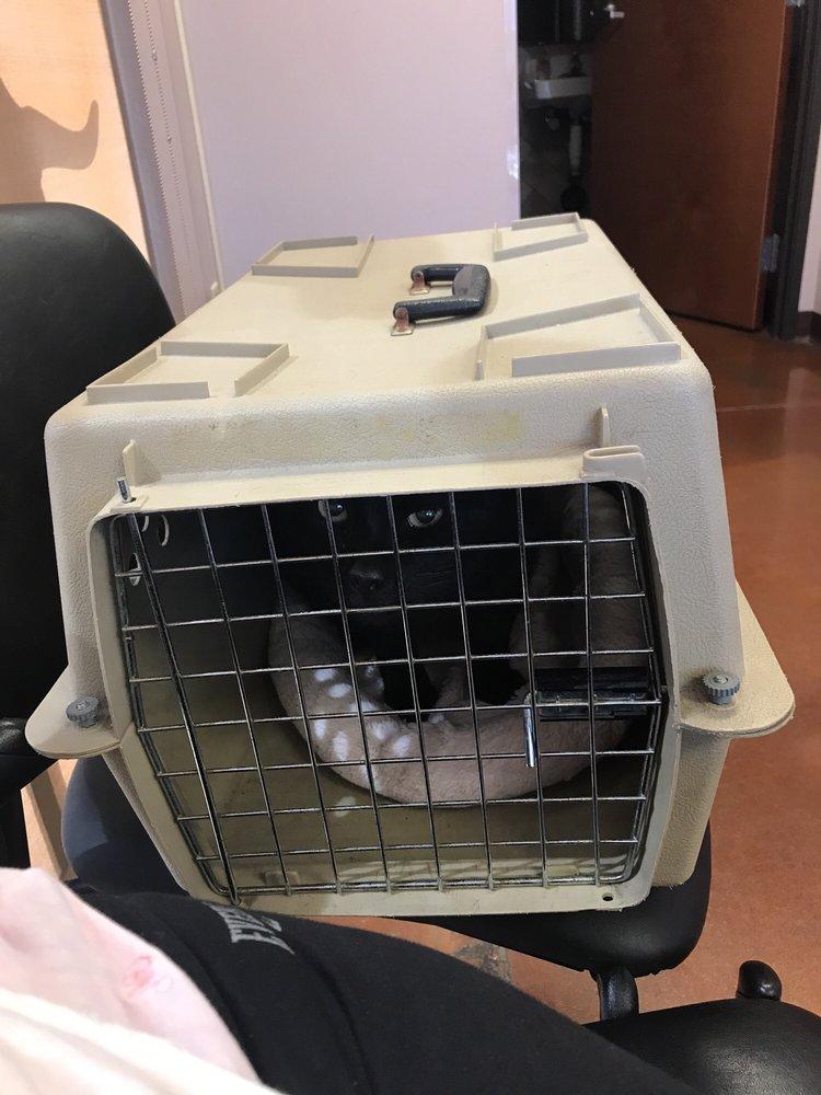 Allandale Veterinary Clinic