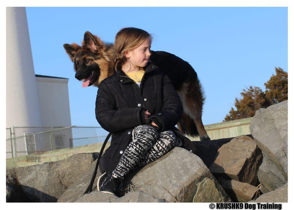 Krushk9 Dog Training: 307 Lighthouse Dr, Manahawkin, NJ