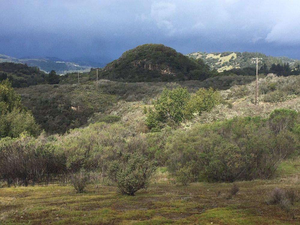 Bed And Breakfast Calistoga Mayacamas Ranch - 18 foto e 40 recensioni - Sale/Spazi per ...