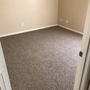 cleaned this photo of pink flamingo carpet cleaning mesa az united states