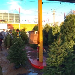 Shawn's Christmas Trees - Christmas Trees - 3443 S Sepulveda Blvd ...