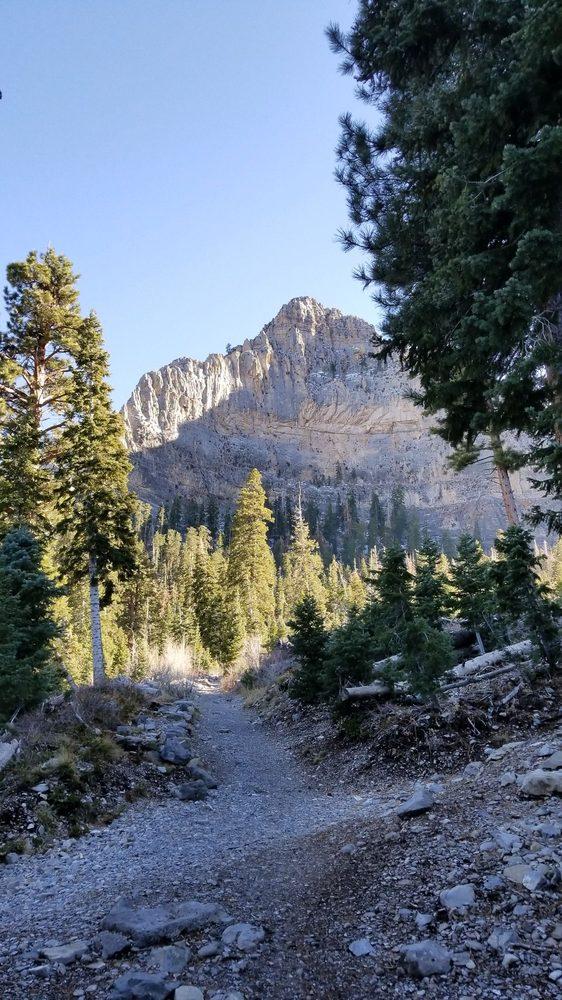 Little Falls: Spring Mountain National Recreation Area, Las Vegas, NV